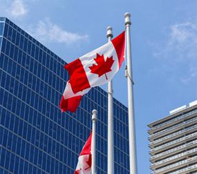 캐나다 AIPP